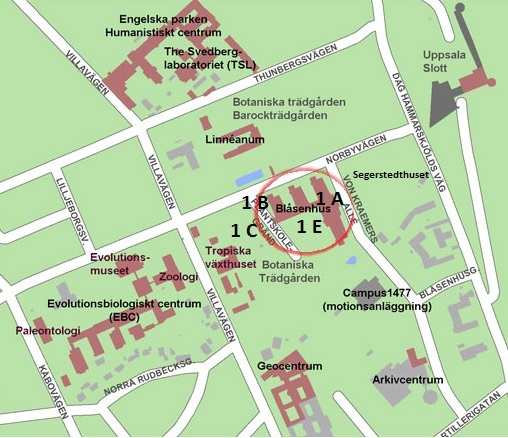 blåsenhus uppsala karta Hitta hit   Intendenturen i Blåsenhus   Uppsala universitet blåsenhus uppsala karta